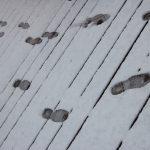 steps_music